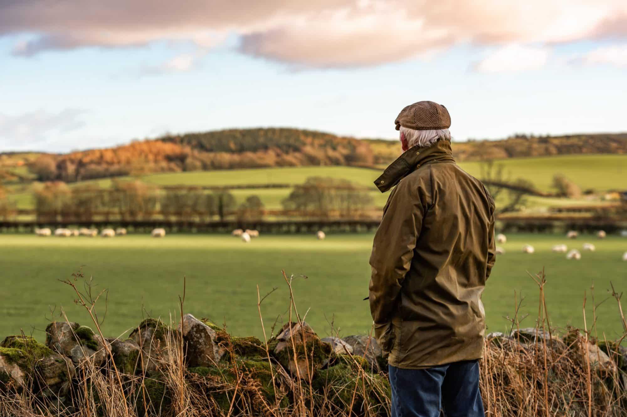 senior man looking at field