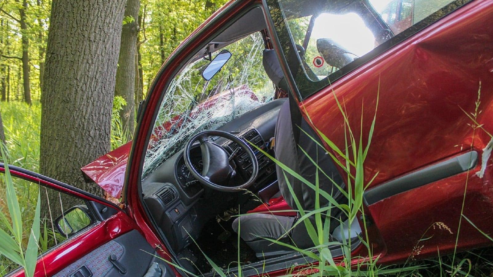 Tree Car Crash